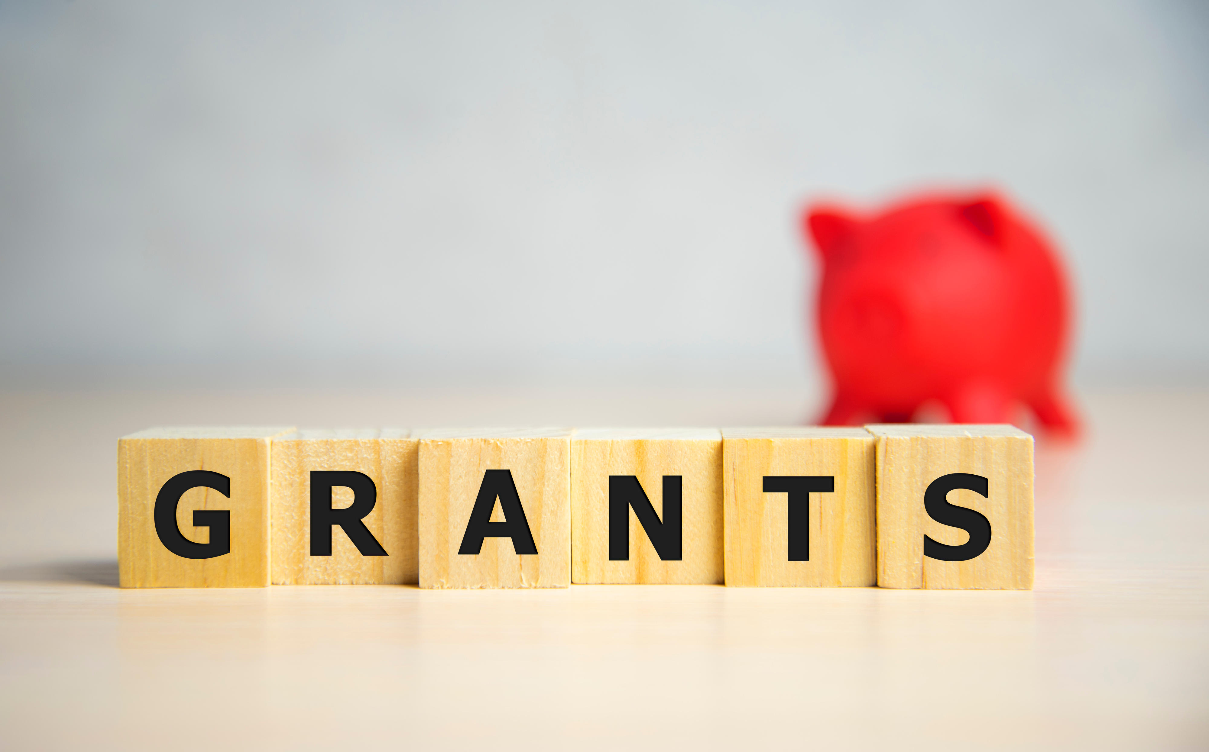 Grants of up to £1,000 per year for Louth projects
