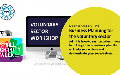 Business Planning for Voluntary Sector Organisations