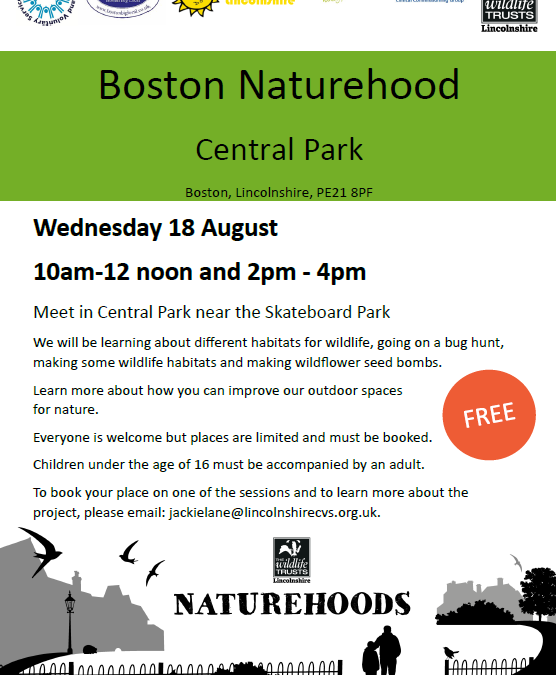 Boston Naturehood Project – Minibeast Hunt and Some Wild Activities in Central Park